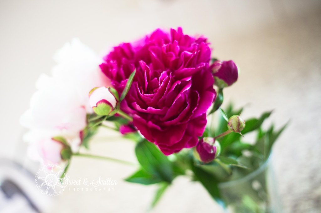 Skazinski-June-2013-Sweet&Smitten-LowRes-48